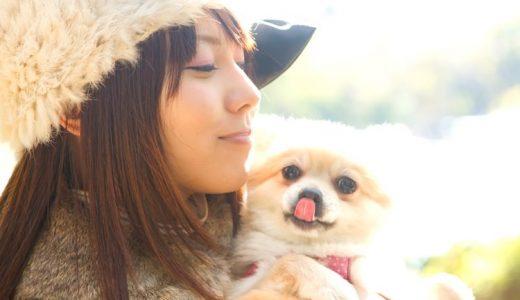 ゴールデンウィーク(GW)|ペット・犬も行けるイベントのおすすめ!